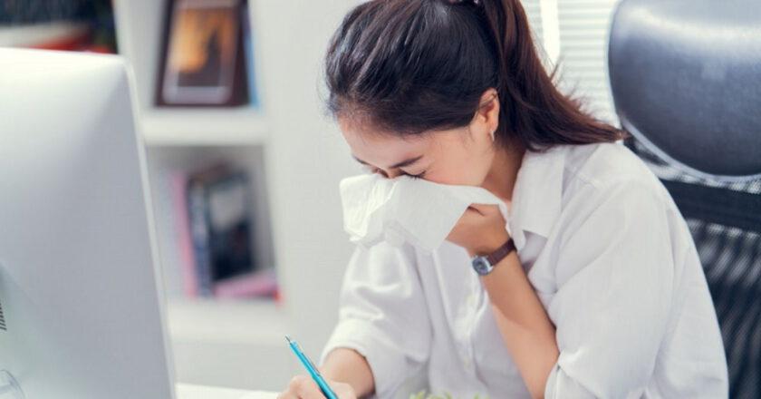 Home office z alergią w tle Czyli jak pracować, kiedy za oknem pyli?